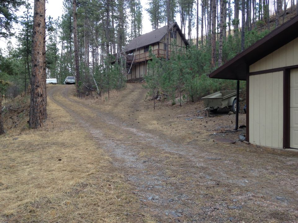 cabin deep in black hills near silver city at tailwaters